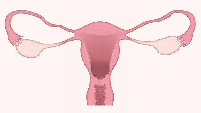 NIH Spearheads Study to Test At-Home Screening for HPV & Cervical Cancer