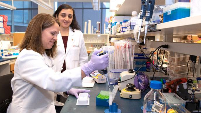 UC Study Sheds Light on Cancer Treatment & COVID-19