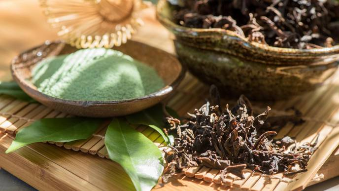 How Adding Green Tea Extract to Prepared Foods May Reduce the Risk for Norovirus