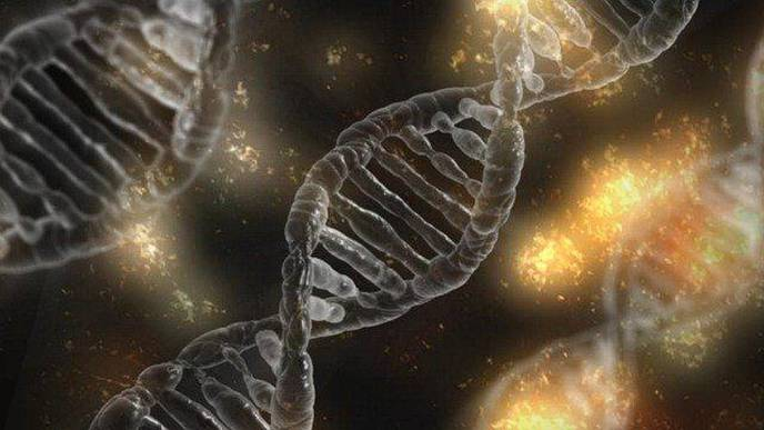 Next-Generation Sequencing to Provide Precision Medicine for Rare Metabolic Disorders