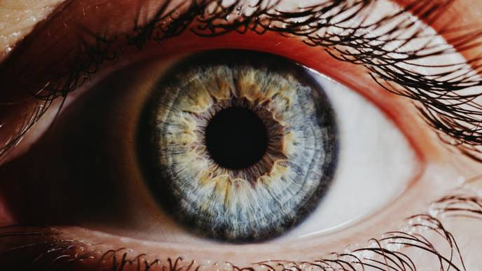 FDA Approves New Therapy for Rare Disease Affecting Optic Nerve, Spinal Cord