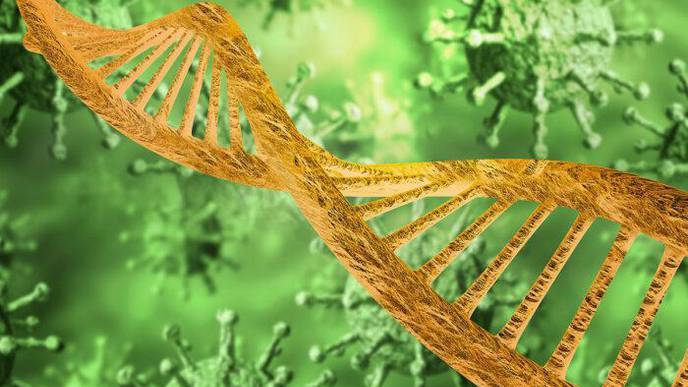COVID-19 Study Looks at Genetics of Healthy People Who Develop Severe Illness