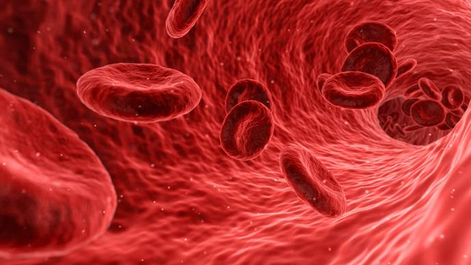 New Stem Cell Transplant Method Could Improve Treatment of Blood Cancer Patients