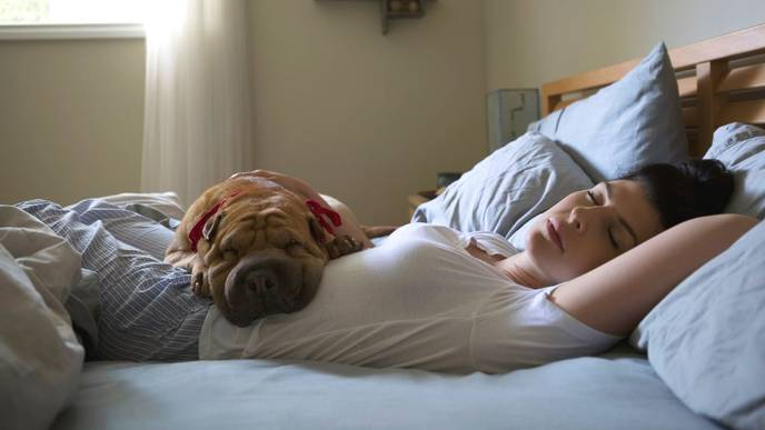 Napping for More Than an Hour Could be Bad for Your Heart Health