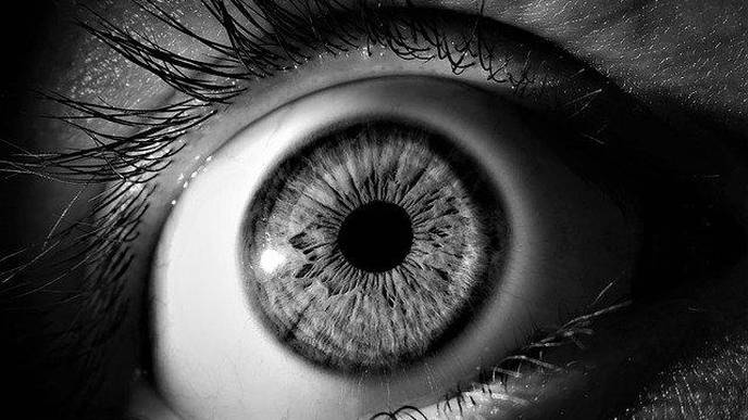 Retinal Texture Could Provide Early Biomarker Of Alzheimer's Disease