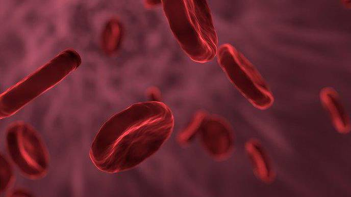 Disparities Seen in Hematologic Cancer Incidence & Survival for Hispanic Patients in Texas