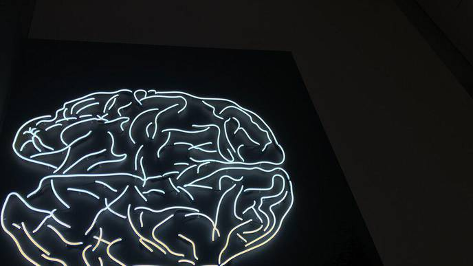 Higher Burden of Acute Brain Dysfunction for COVID-19 ICU Patients